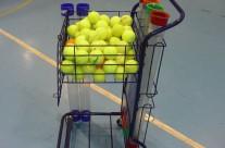 Cesto con ruedas para pelotas